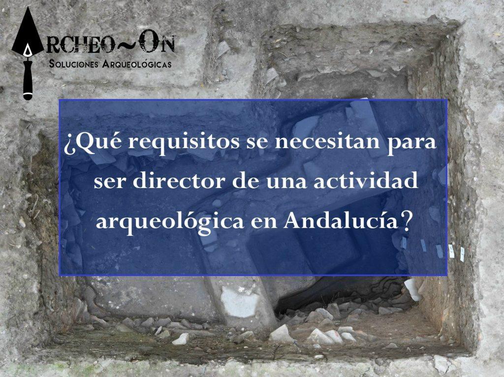 ¿Qué requisitos se necesitan para ser director de una actividad arqueológica en Andalucía?